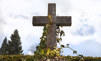 Overgrown Cross